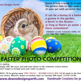 Easter Photo Competition